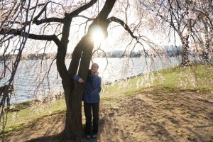 Kenzie in front of Cherry Blossom Tree